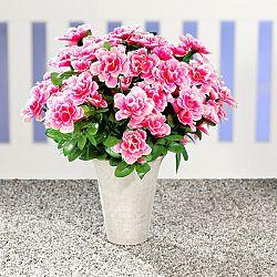 Azáleacsokor - rózsaszín-fehér színben