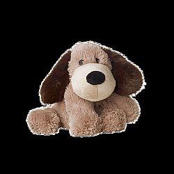 Beddy Bear kutya, Gary, melegíthető plüss kutya
