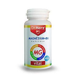 Dr. Herz Magnézium+B6 kapszula, 60 db