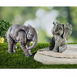 Elefánt, álló