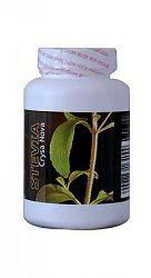 Stevia (sztívia) Crysa Nova por, 50 g