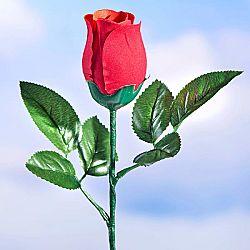 Zenélő rózsa
